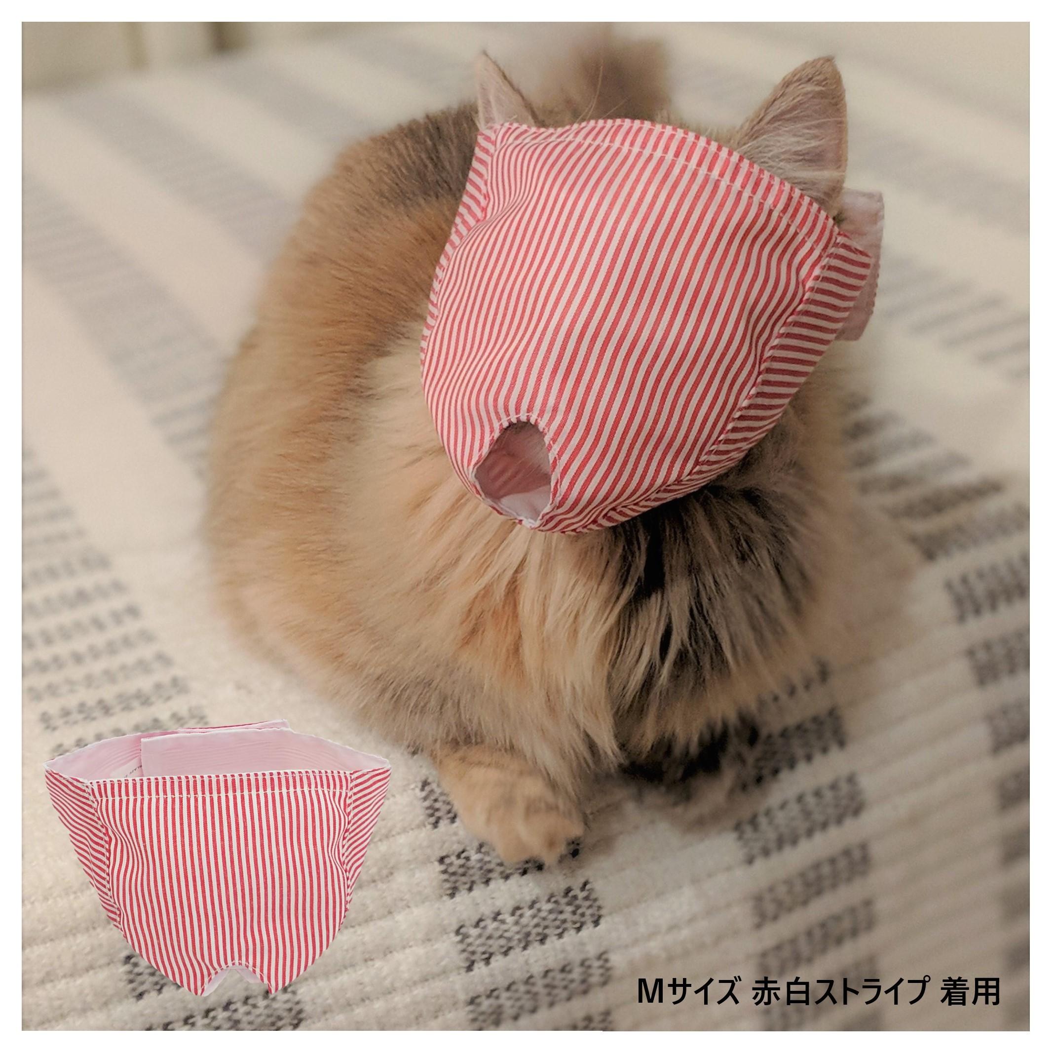 猫 耳掃除