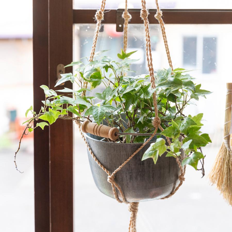 マクラメで吊るして、インテリアに植物を(豆バケツ大)