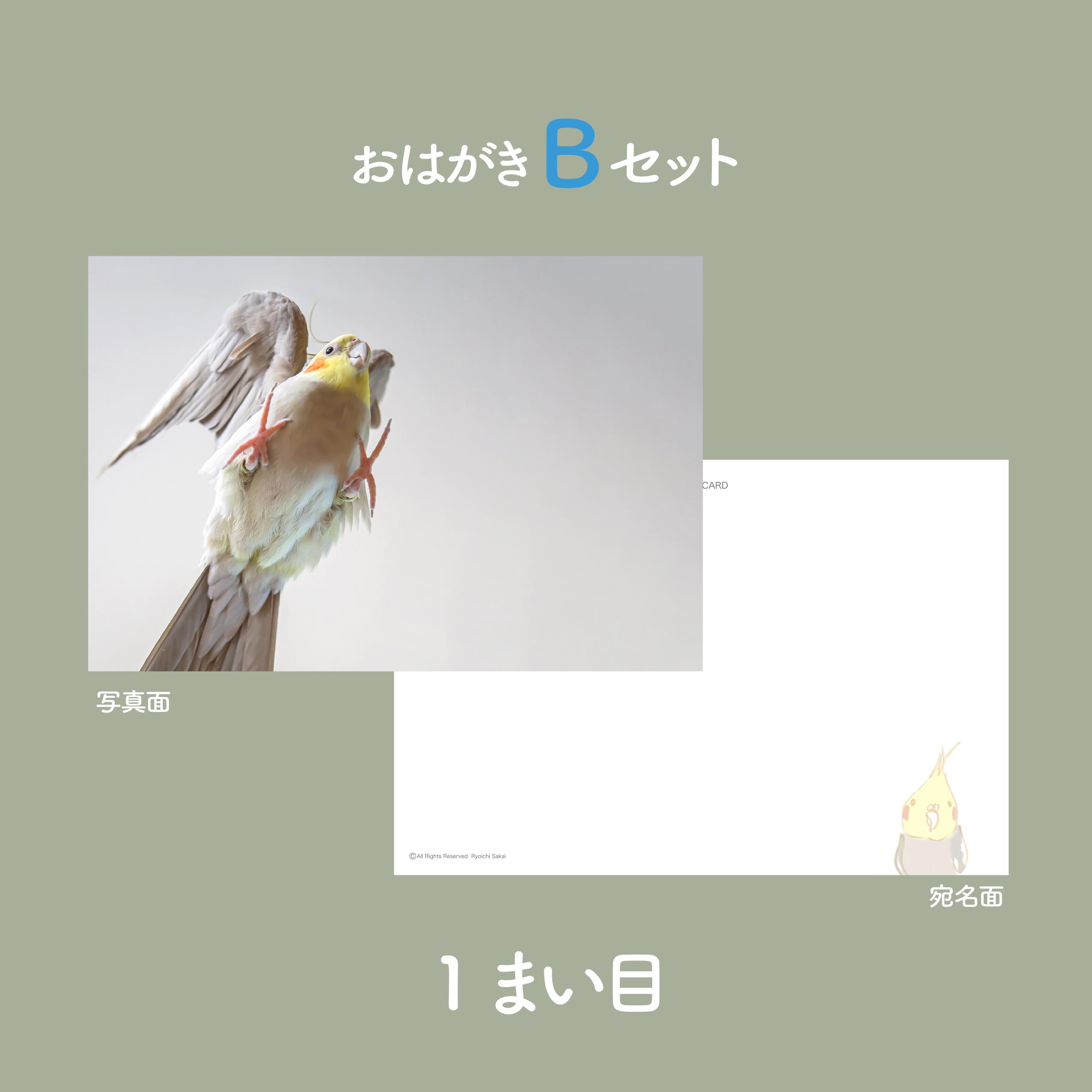 ぽぃちゃん天使?!