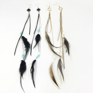 Long Feather and Code Pierce (SE4047)