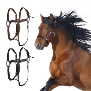 Horse Bridle Horses Equestrian Woven Belt Leather Headstall  Racing Riding Competitions Farm Animals Halters