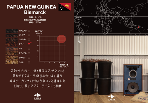 Papua New Guinea 200g City Roast