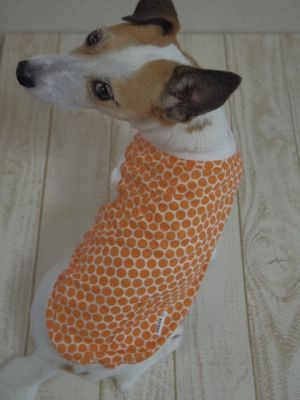 ¥2,916→2,376【M/XL】Orange dots tank