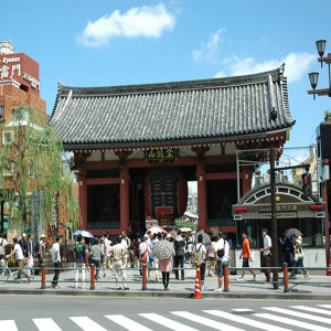 【 20%OFF Last Minute Sale !! 】 FULL DAY TOKYO TOUR *Without Lunch
