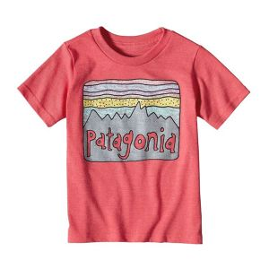 30% OFF !   Patagonia Baby Fitz Roy Skies T-Shirt ( CIE カラー ) パタゴニア  キッズ