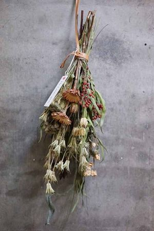 TLS DRIED FLOWERS