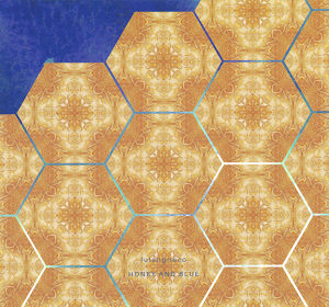 futaligireco | HONEY AND BLUE