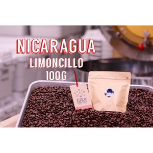 100g ニカラグア・Premium Specialty・Middle Roast
