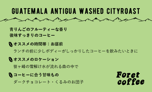【粉300g】スペシャルティコーヒー Guatemala Antigua washed city Roast