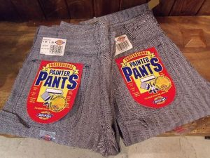 DEAD STOCK★【Dickies】 Painter Pants