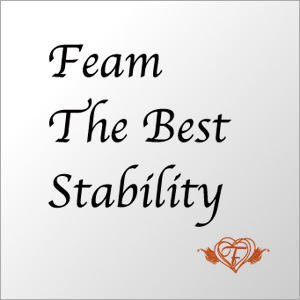 Feam The Beat Stability