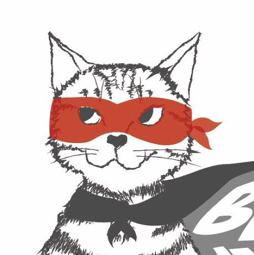 Super Cat Hero