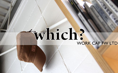 KAESU WORK CAP FW LTD