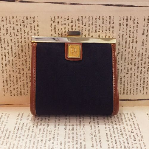 Christian Dior coin case