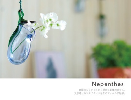 Nepenthes(ネペンタス)with bouquet ネット限定 小さなブーケ付き