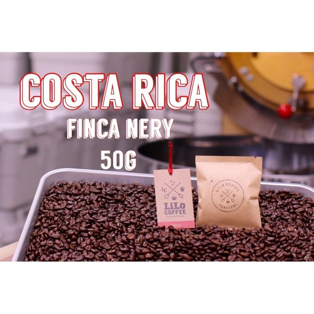 50g  コスタリカ・Specialty・Middle roast