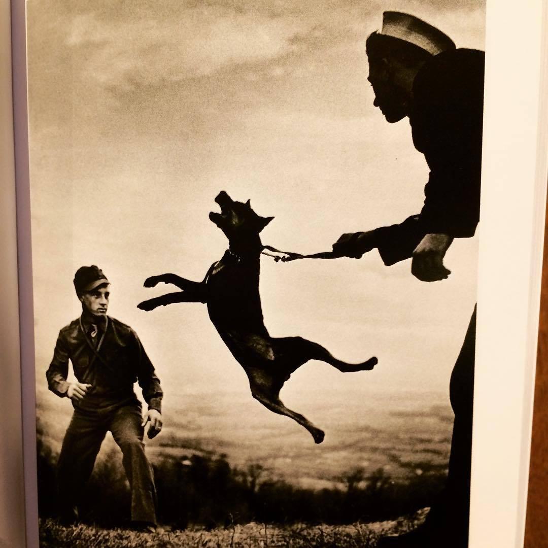 ユージン・スミス写真集「W.Eugene Smith(Photo poche)」 - 画像3