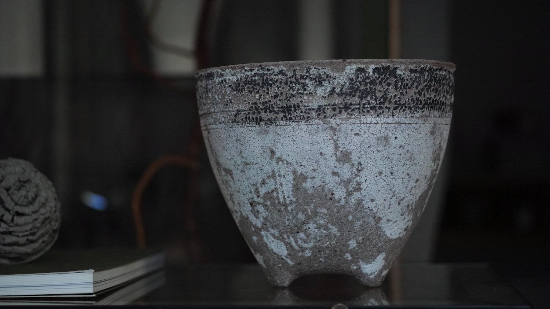Wataru Myosyu/明主航/flowerpot