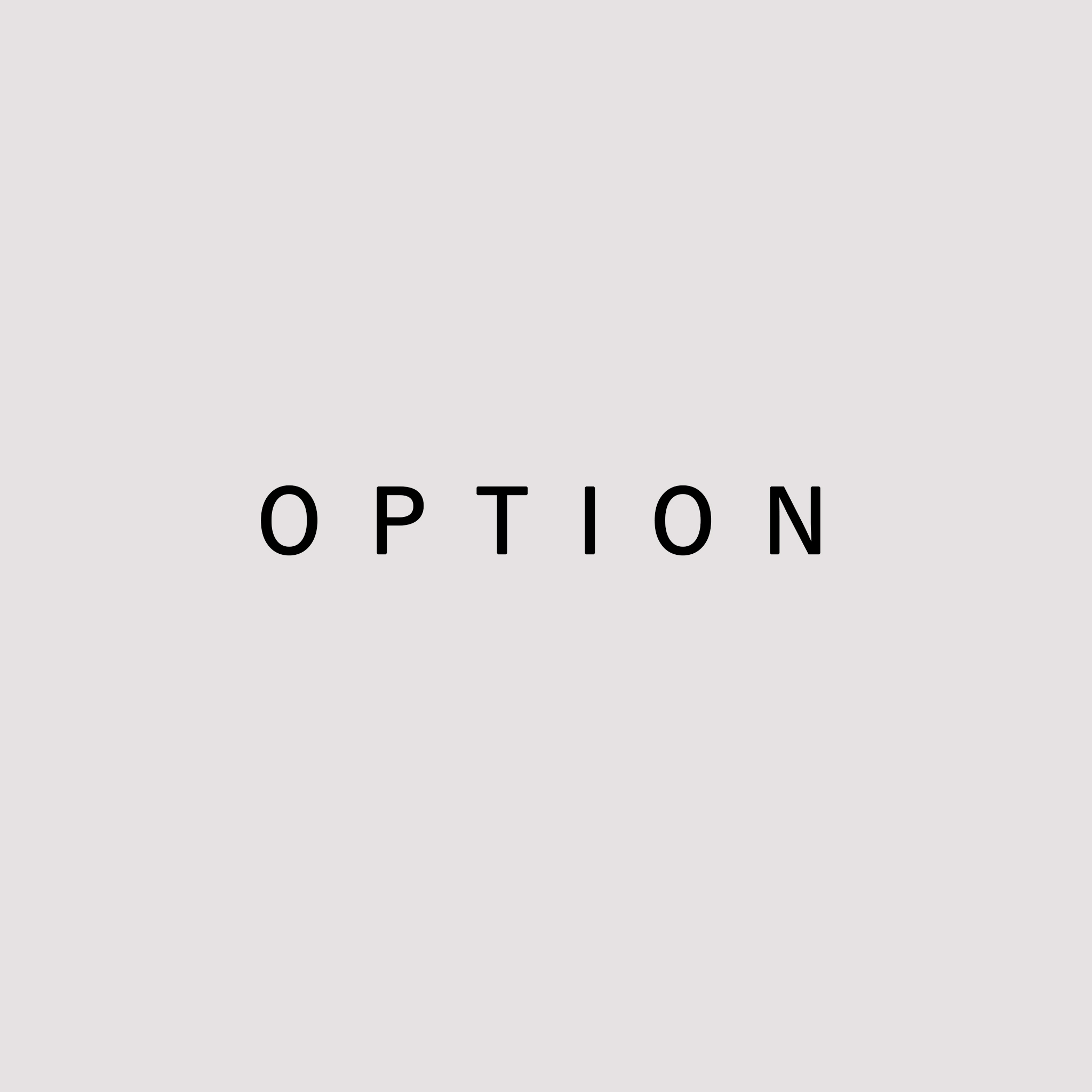 OPTION 《 2,000 yen 》