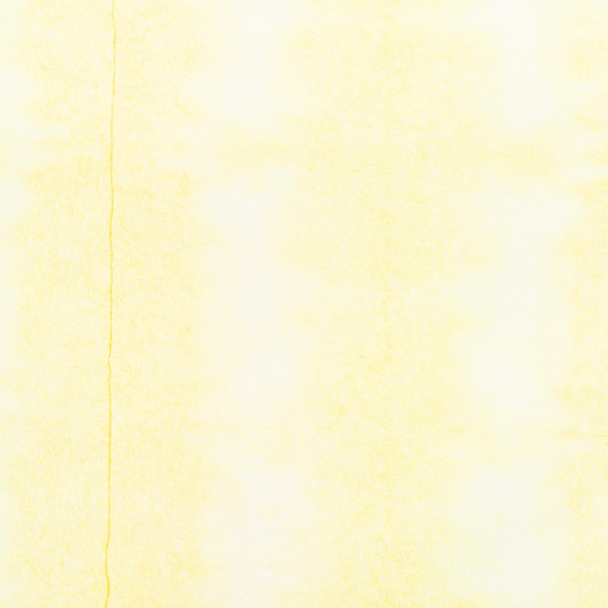 典具帖紙 板締め 薄口 No.11