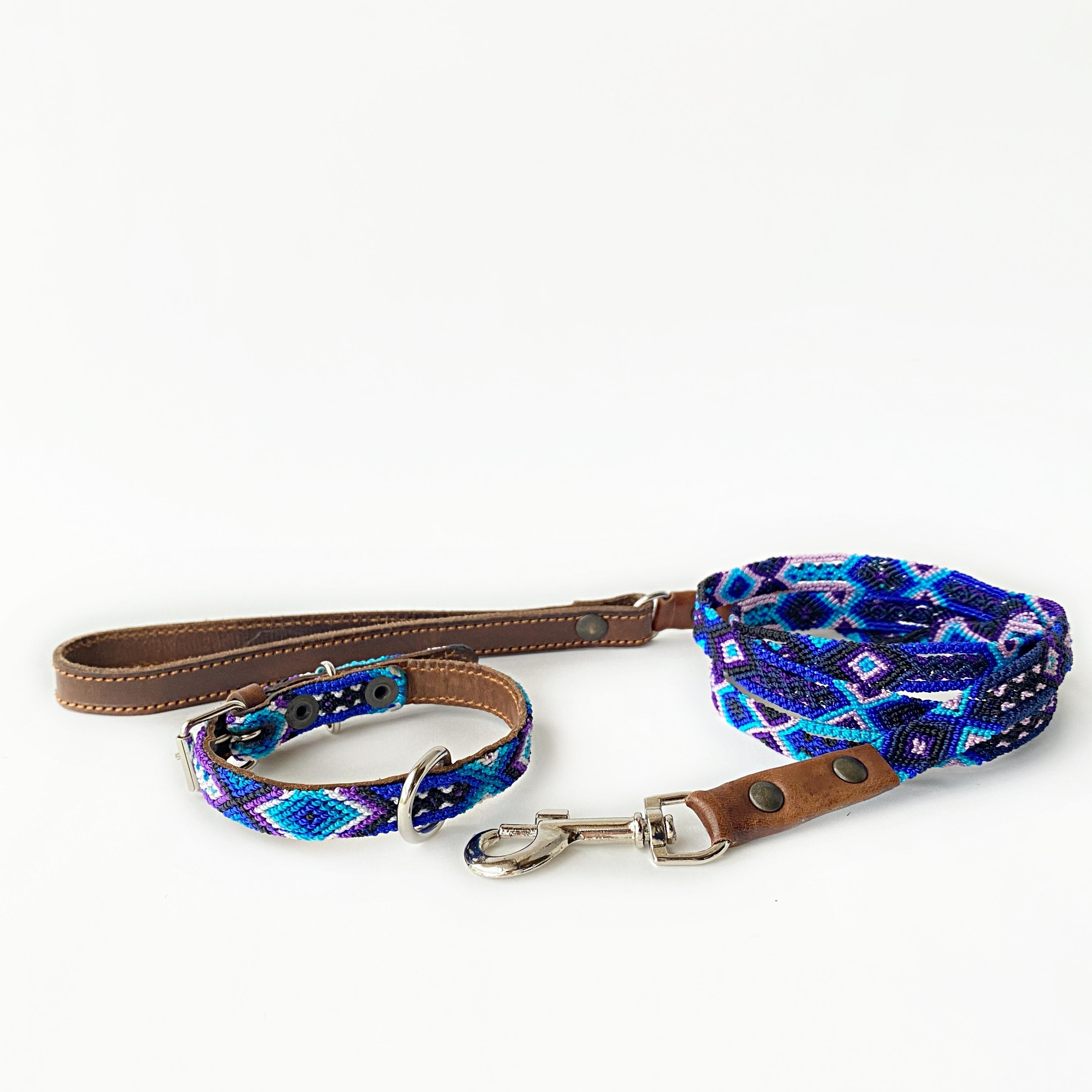 セット (犬の首輪 -サイズXS mini- /リード -サイズ S-) [レイニーデイズ]