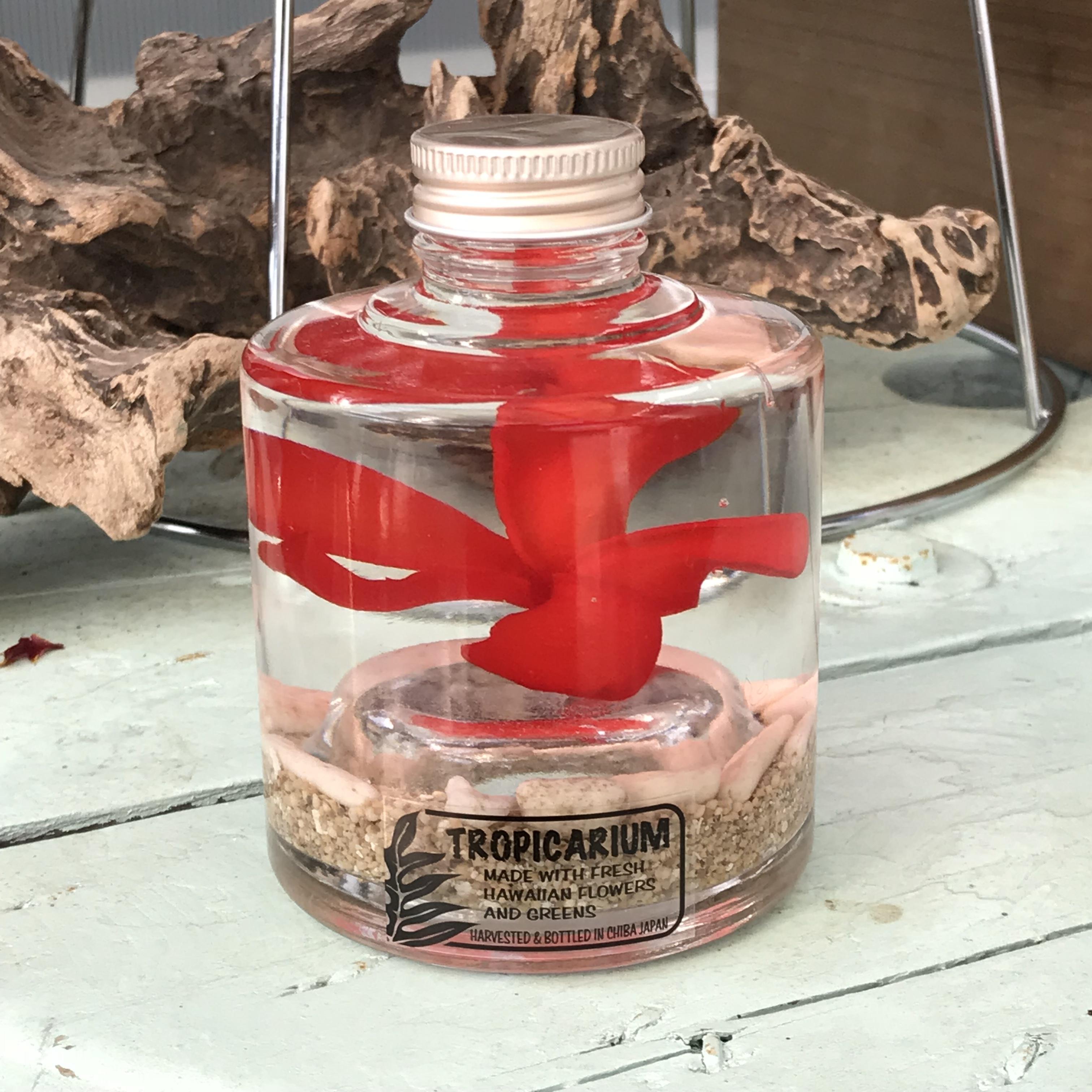 【ハワイアンなハーバリウム】プルメリアのトロピカリウム|レッド(スタッキングボトル・プリザーブド)
