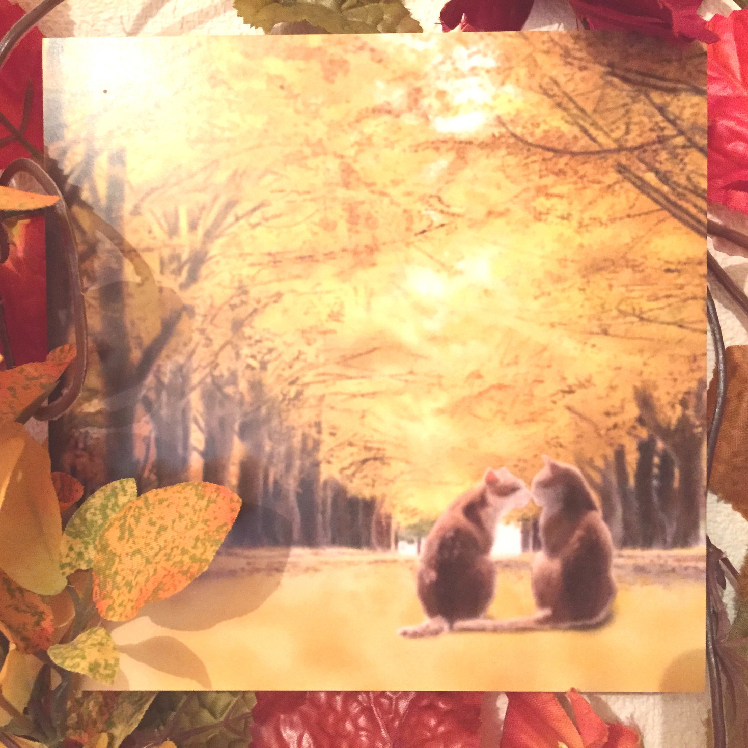 絵画 インテリア アートパネル 雑貨 壁掛け 置物 おしゃれ 猫 動物 デジタルアート 並木道 ロココロ 画家 : rune 作品 : 並木通りの猫達