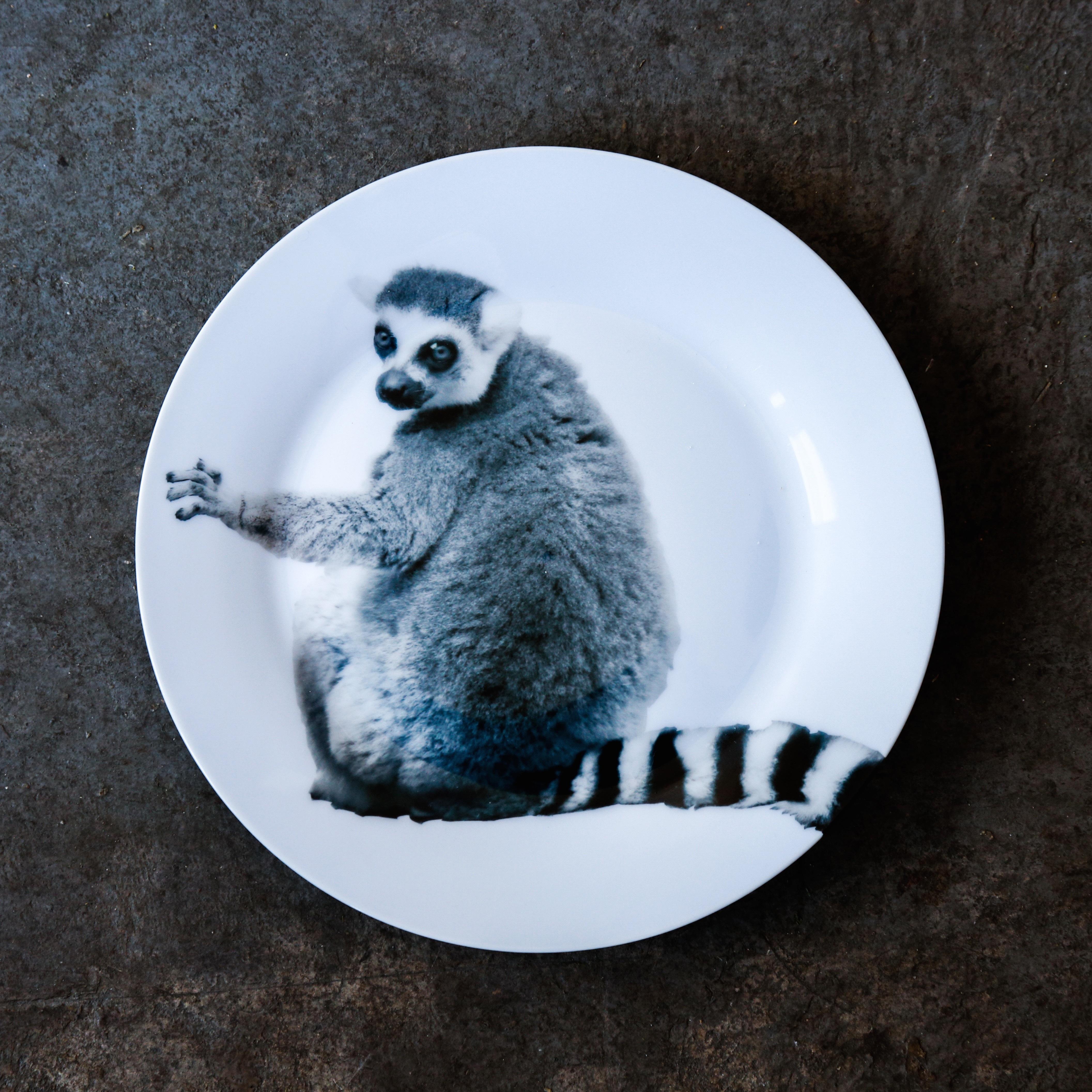 《michirico》動物たちの飾るお皿「ワオキツネザル」