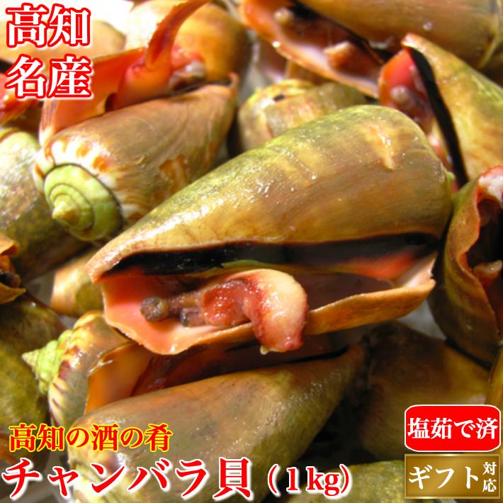 チャンバラ貝 (マガキ貝)1kg 高級海鮮珍味 酒の肴 ちゃんばら貝  ギフト グルメ 珍味 海産物 送料無料