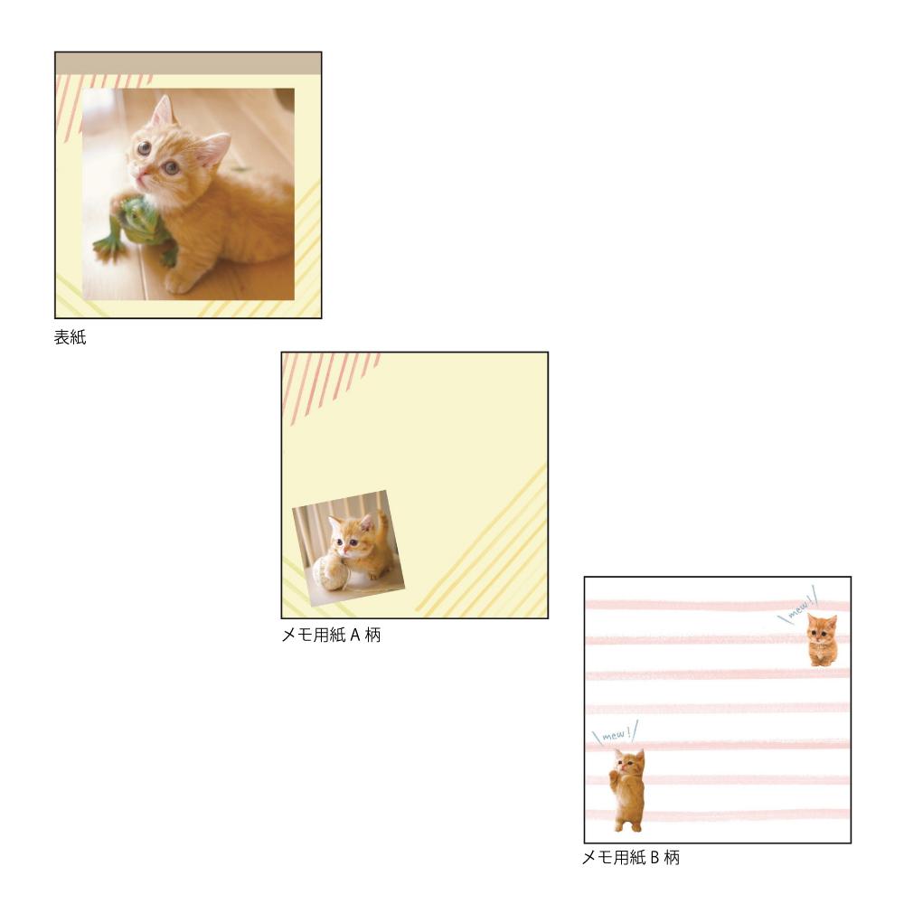 猫メモ(こねこのまなざしがたまらない)