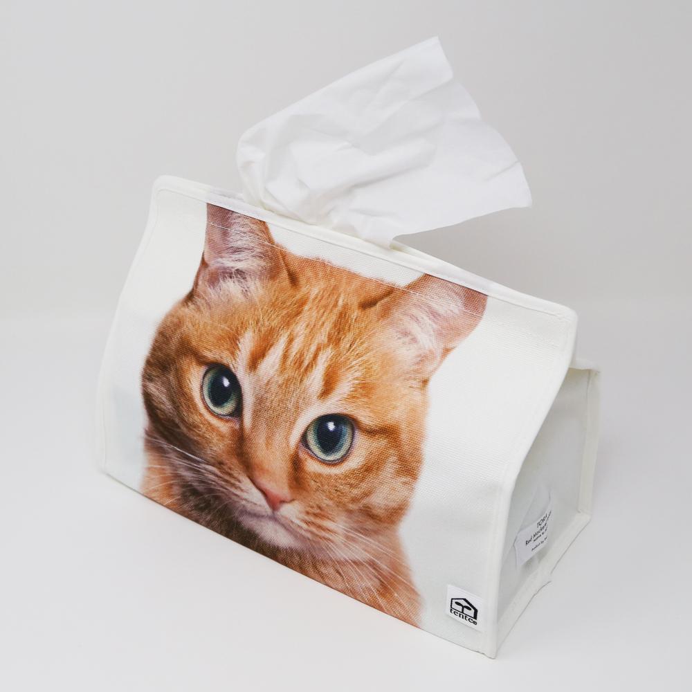 猫ティッシュボックスカバー(テンテトラネコ)
