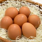 【送料無料(※沖縄除く)】にんにく卵(30個入り定期便)