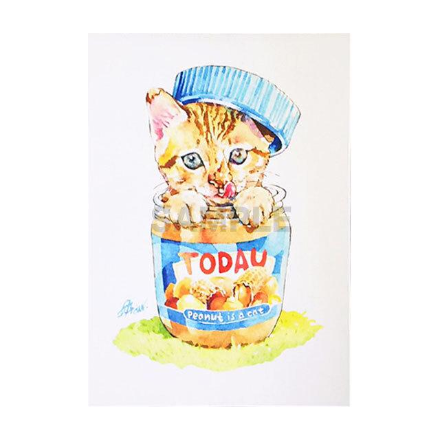 台湾ポストカード 水彩猫「peanut is a cat」