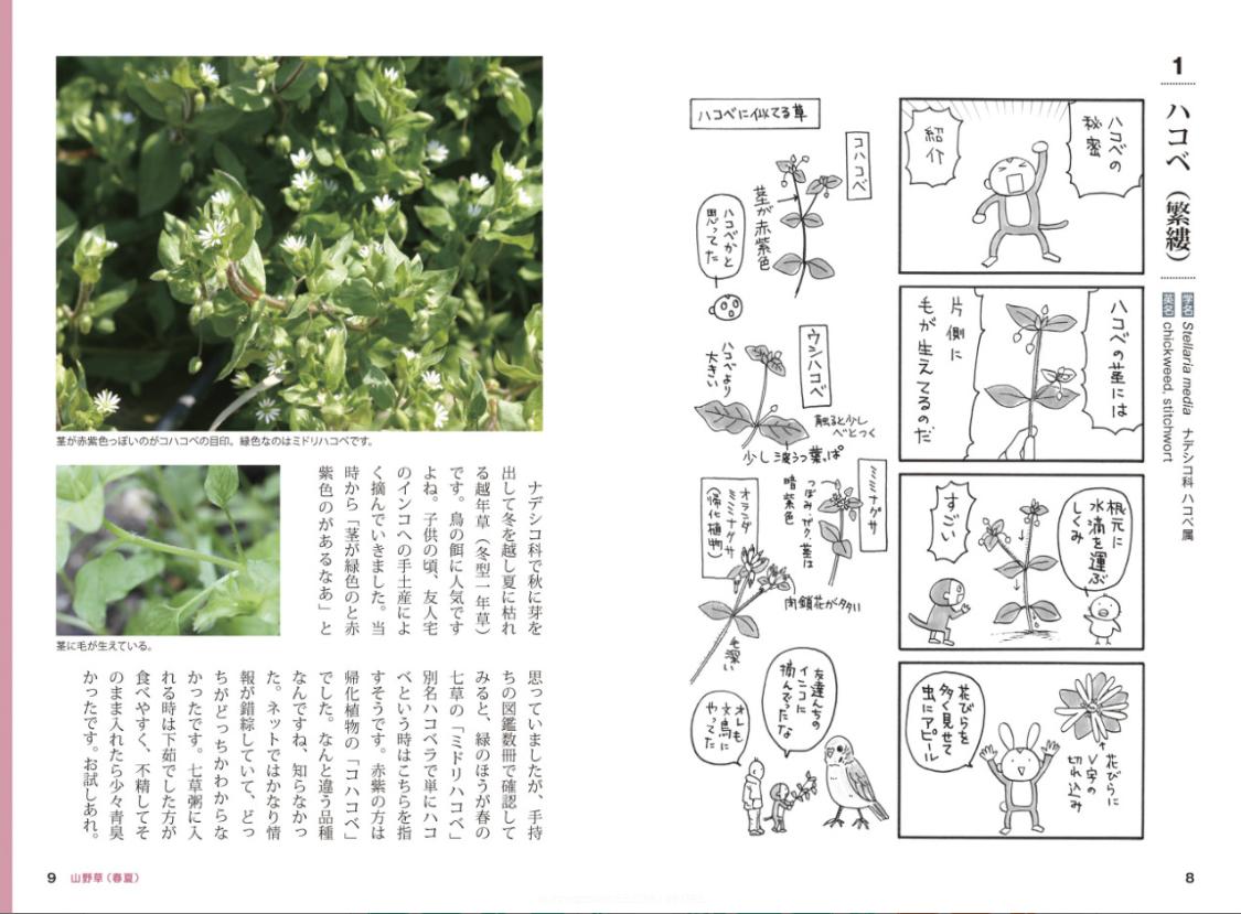 [書籍]『おもしろ植物図鑑』 - 画像3