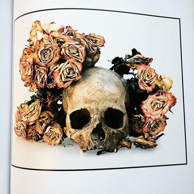 写真集「Flowers, Skulls, Contacts/David Bailey」 - 画像2