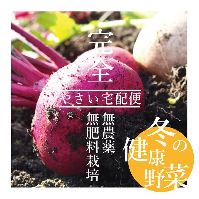 【送料無料*一部地域を除く】無農薬・無肥料栽培 冬の健康野菜 根菜セット