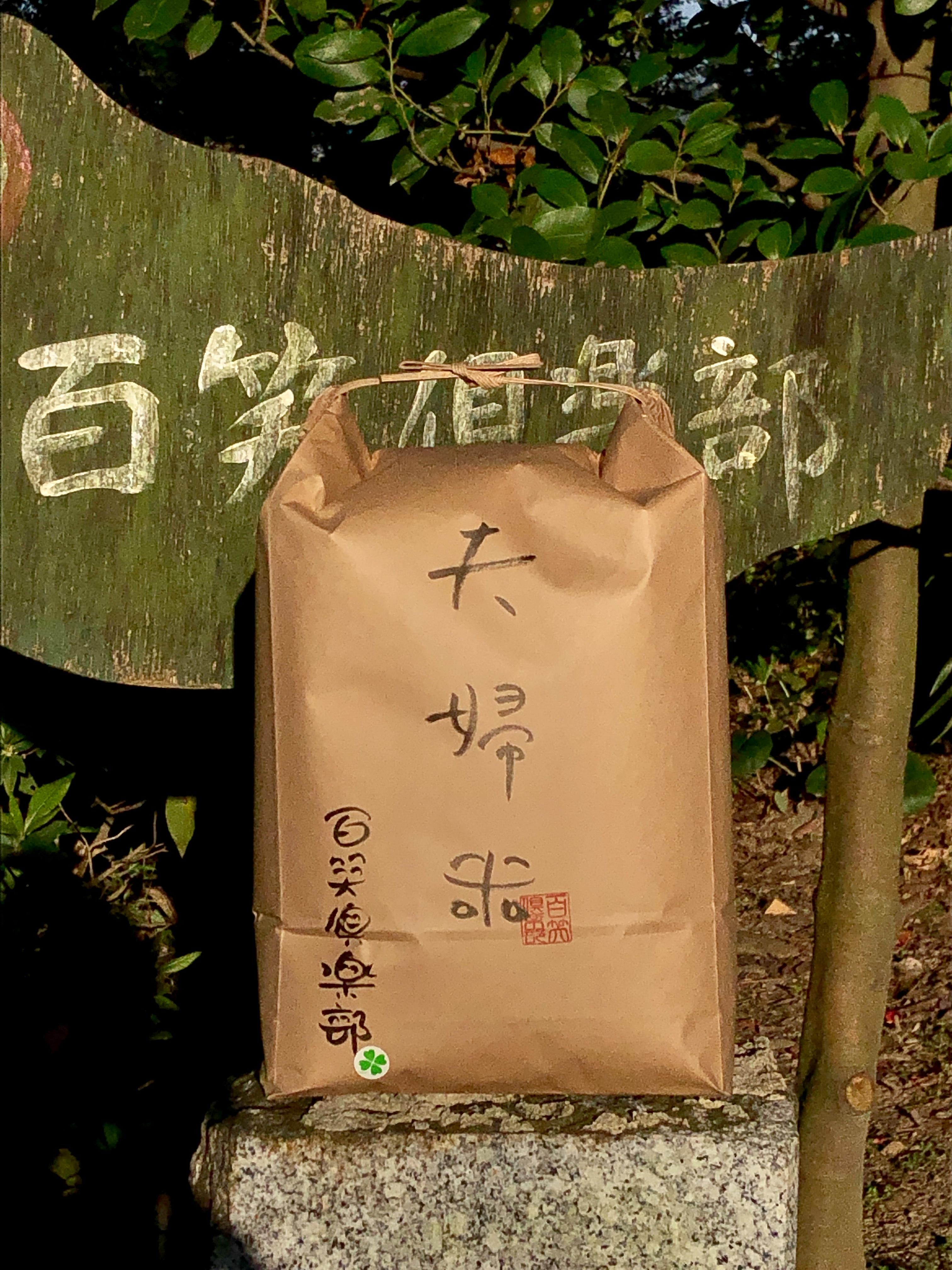 【10kg】夫婦米 白米
