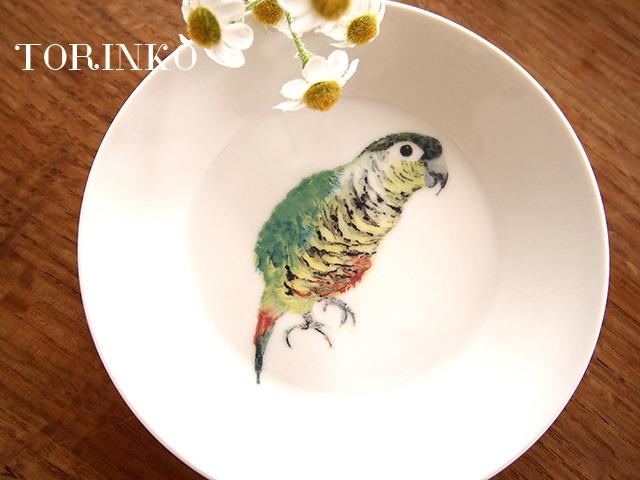 ウロコインコ お皿 中サイズ(インコ・オウム・鳥)