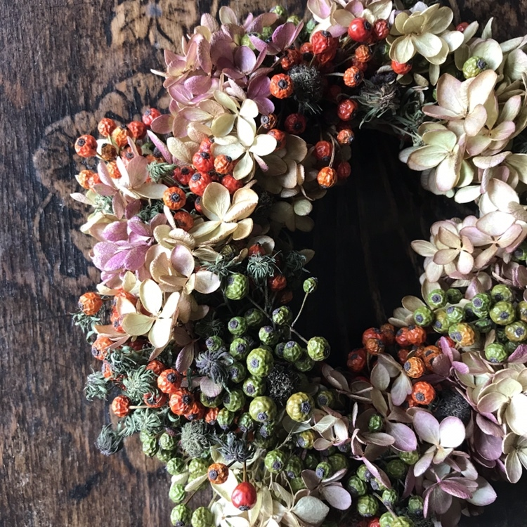 Dried Panicled hydrangea and wild rose hips wreath / A(ミナヅキとの野ばらの実のドライリース / A)