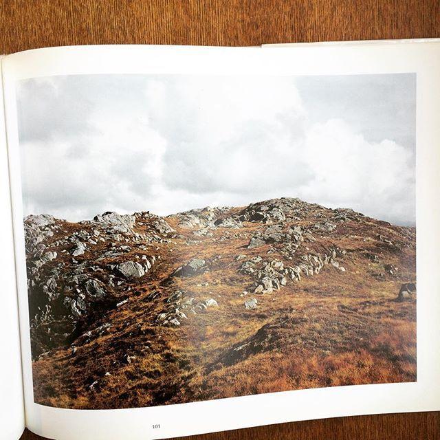 スティーブン・ショア写真集「Fotografien 1973 - 1993/Stephen Shore」 - 画像2