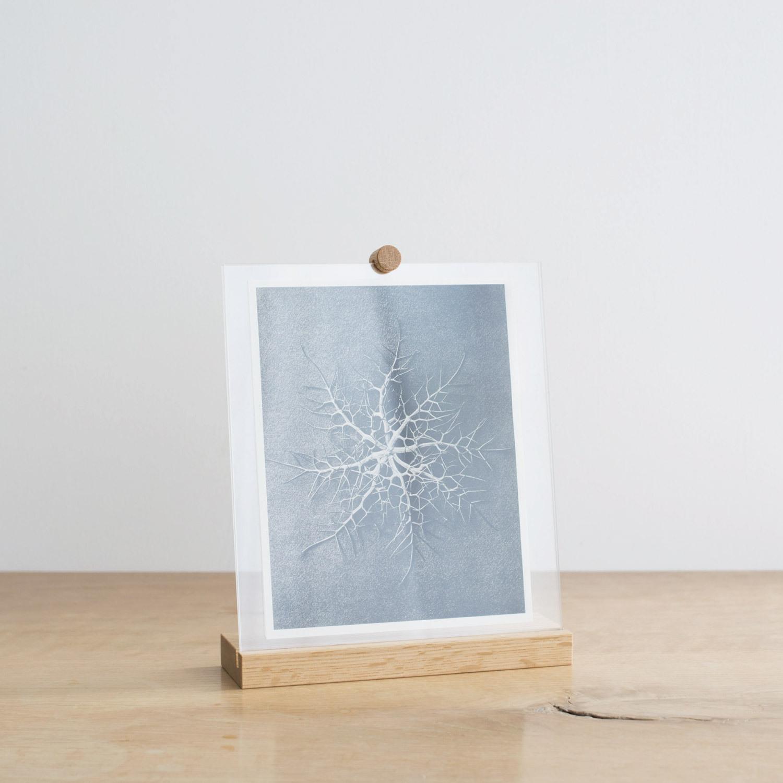 Light Frame