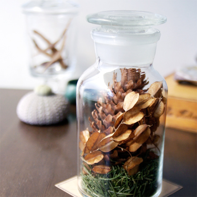 """Botanical Bottle """"Picea abies"""""""