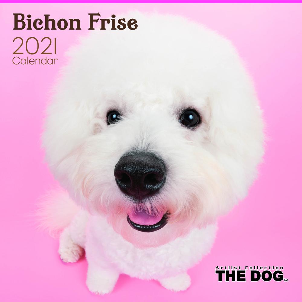 2021年 THE DOGカレンダー【大判サイズ】ビション・フリーゼ
