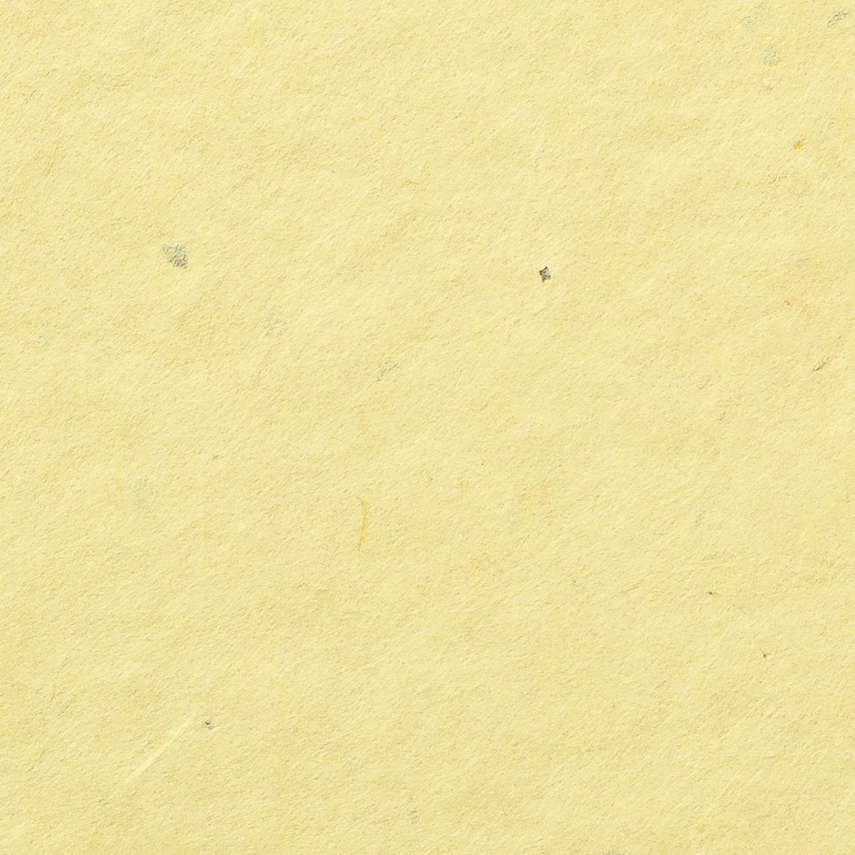 阿波 粕板紙 黄
