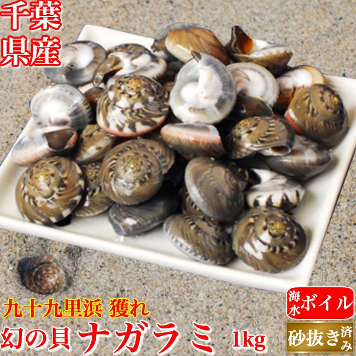 天然 ナガラミ (マイゴ) 1kg  海水ボイル 砂抜き ながらみ 千葉県 九十九里浜産  冷凍  送料無料 ギフト  海産物
