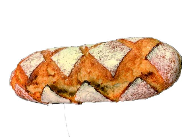 オーガニックスペルト(古代小麦)バゲット 小