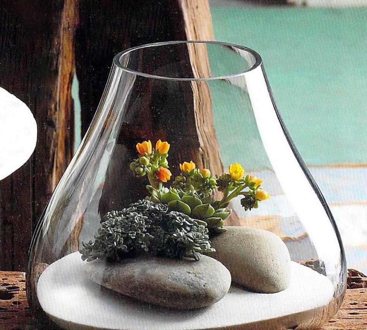 ガラステラリウム ハンドメイド吹きガラス Large