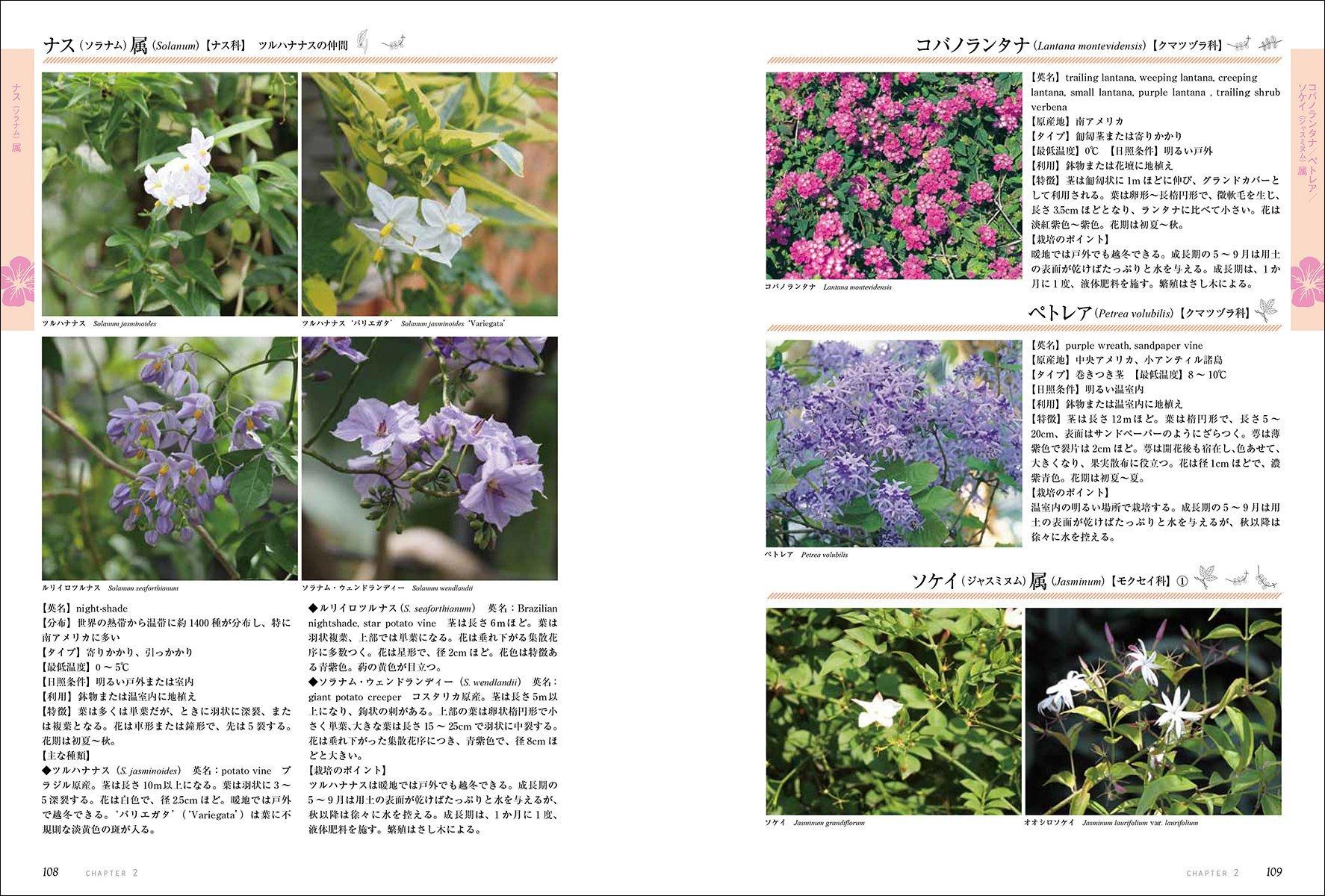 [書籍]『ガーデンライフシリーズ 仕立てて楽しむつる植物: つるバラ・クレマチス・アサガオから珍しい植物まで』 - 画像2
