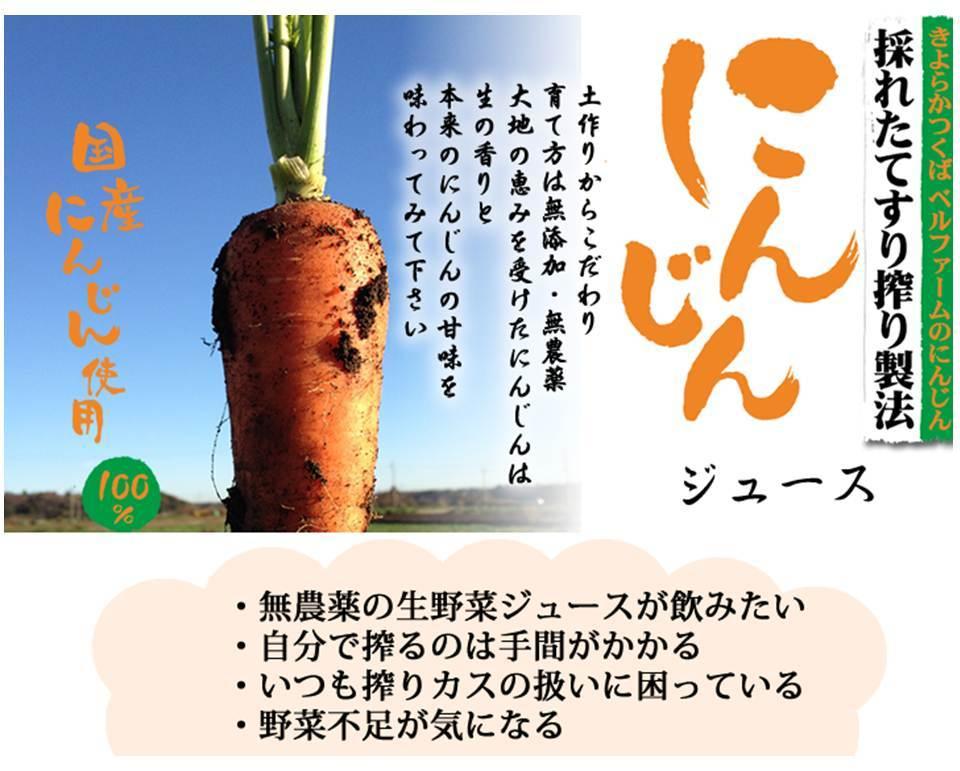 冷凍すり搾り製法のにんじんジュース(100g1袋) - 画像3