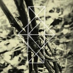 COMMON EIDER, KING EIDER - Shrines For The Unwanted, Respite For The Cast Aside  CD - 画像1